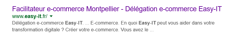 Audit SEO de site web - Facilitateur e-commerce