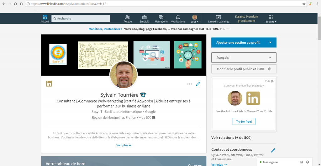 profil LinkedIn Consultant E-commerce Webmarketing